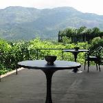 The bar terrace