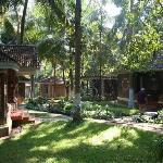 Kairali garden