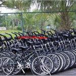 on site bike rental