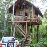 Tree Houses Hotel Costa Rica Photo