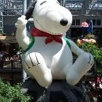 Snoopy greets you!!!