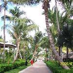 ClubHotel Riu Bambu ภาพถ่าย