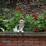 Sock-monkey enjoing coffee in the garden