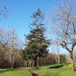 Garin Regional Park照片
