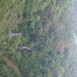 View from Las Orquideas