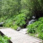 Small Waterfall & Footbridge