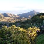 Inner Catalina