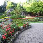 Garden walkways