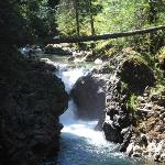Little Qualicum Falls Provincial Park Picture