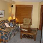 Livingroom area in 1 BR unit