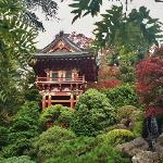 Golden Gate Park - Japanese Tea Garden