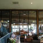 Pool area from main lobby