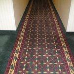 Hallway carpet is nice on the feet