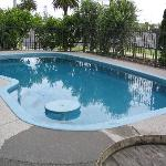 Small kidney shaped pool