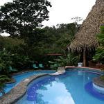 pool at resort, swim up bar