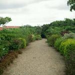 The walkway is a horticultural lesson
