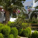 ...jungle in Paros