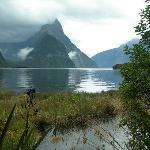 Mitre's Peak in Milford Sound