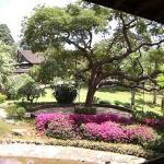 safari park gardens