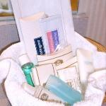 Bathroom Amenity Kit (Nice!)