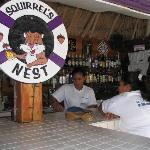 Squirrels Nest-On site beach bar