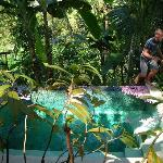 Plunge Pool-Very shaded by trees making the water a little chilly