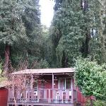 Fern River Resort Motel Photo