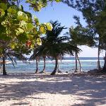 Фотография Cayman Brac Beach Resort