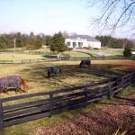 The Inn is located on a horse farm