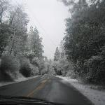 An unsual winter in Amador county
