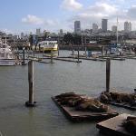View back towards Fisherman's Wharf