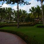 Landscape - Iberostar Dominicana Hotel Photo