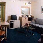 Suite #496