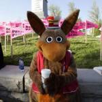 Kenny the Kangaroo, Kennywoods mascot