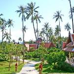 Inside resort
