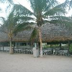 Cazon Beach Grill