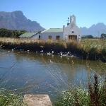 the little chapel & the ducks!