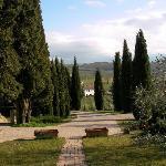 写真Sant' Antonio枚