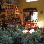 Morning at Casa de Las Flores