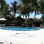 Pool at Sibonne