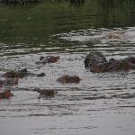 Keekorok Lodge-Sun Africa Hotels Photo