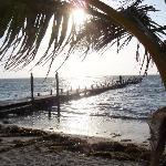 Фотография Belize Jungle Dome