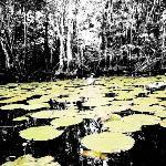 Lago Izabal near Puerto Barrios, a tourist paradise