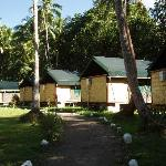 The Safari Tents