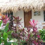 盧娜藍光花園飯店照片
