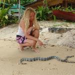 Me with a sea snake
