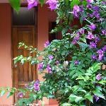 nice garden, terrible hostel