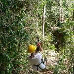 aerial zip line in Belize