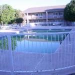 'Green' Swimming Pool