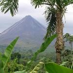 The view of Arenal from my room